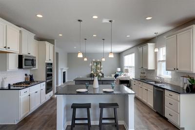 Blaine Single Family Home For Sale: 12384 Lever Street NE