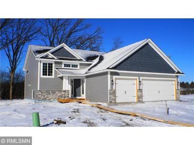 Farmington Single Family Home For Sale: 6546 210th Street