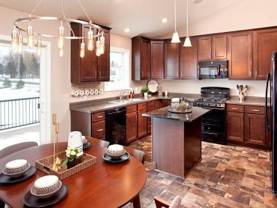 Waconia Single Family Home For Sale: 645 Stonegate Circle