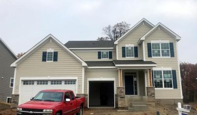 Chaska Single Family Home For Sale: 801 Cascade Drive
