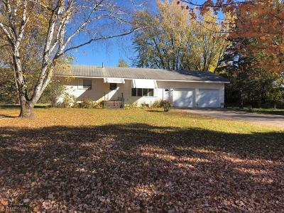 North Branch Single Family Home For Sale: 36147 Forest Boulevard