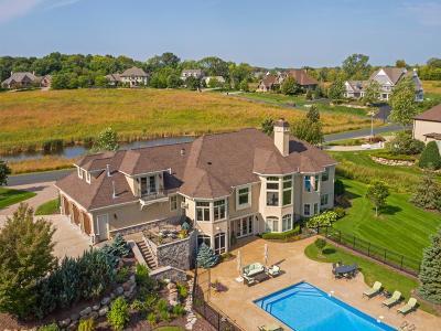 Medina Single Family Home For Sale: 230 Calamus Circle