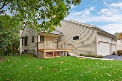 Eagan Condo/Townhouse For Sale: 3682 Widgeon Way