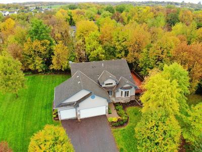 Saint Bonifacius Single Family Home For Sale: 4204 Walnut Road