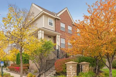 Eden Prairie Condo/Townhouse For Sale: 11208 Preswick Boulevard