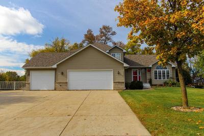 Howard Lake Single Family Home For Sale: 1215 Shoreline Drive