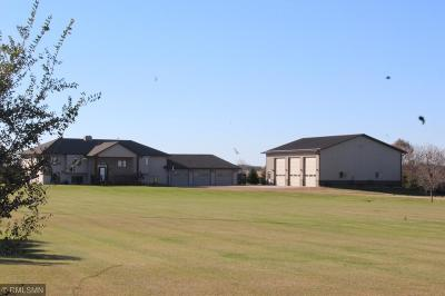 Mcleod County Single Family Home For Sale: 14347 Eagle Avenue