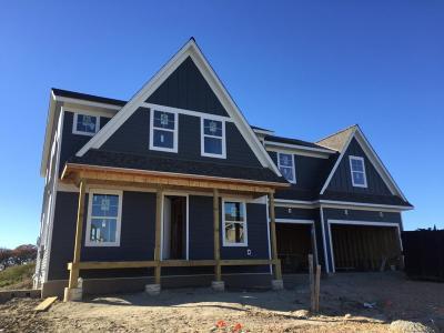 Chaska Single Family Home For Sale: 4429 Savanna Trail