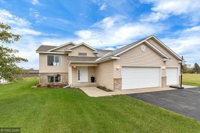 Saint Joseph Single Family Home For Sale: 358 4th Avenue SE