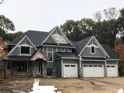 Ham Lake Single Family Home For Sale: 14228 Packard Street NE