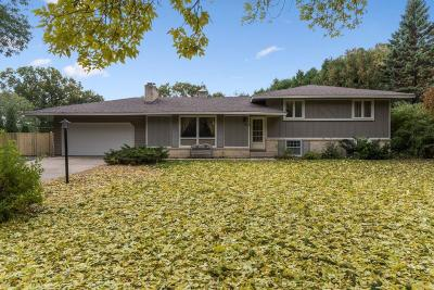 Apple Valley Single Family Home For Sale: 385 Walnut Lane