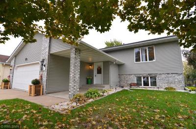 Hastings Single Family Home Contingent: 1177 Sherman Way
