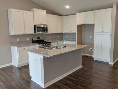 Woodbury Single Family Home For Sale: 8544 Titanium Circle