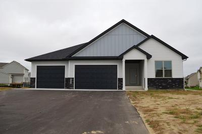 Chisago City Single Family Home For Sale: 29405 Scenic Drive