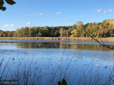 Big Lake Twp MN Residential Lots & Land For Sale: $685,000