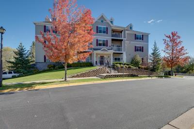 Eden Prairie, Carver, Chaska, Chanhassen Condo/Townhouse For Sale: 12693 Collegeview Drive #301