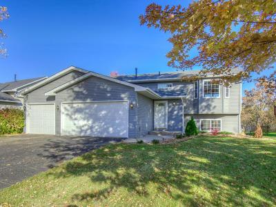 Brooklyn Park Single Family Home For Sale: 9012 Nevada Avenue N