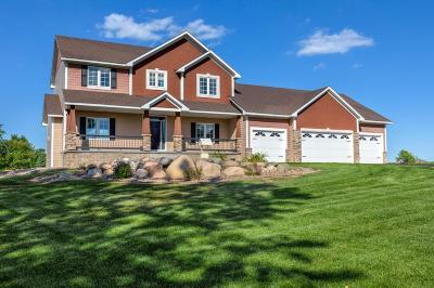 New Market Twp Single Family Home For Sale: 24461 Black Walnut Drive