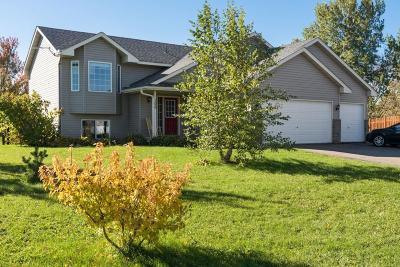 Buffalo Single Family Home For Sale: 100 Buffalo Hills Circle