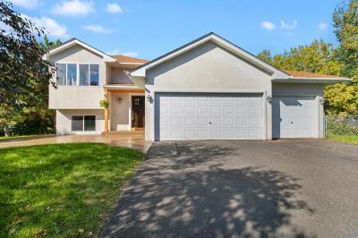 Blaine Single Family Home For Sale: 8674 Edison Street NE