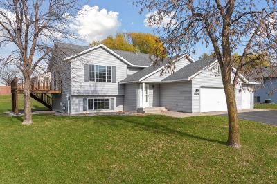 Albertville Single Family Home For Sale: 10420 61st Street NE