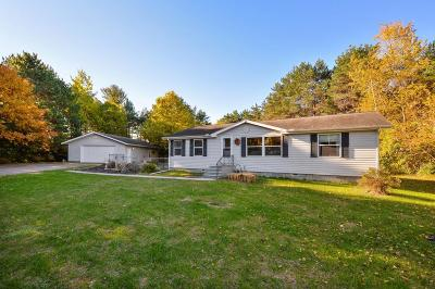 North Branch Single Family Home For Sale: 5361 Pine Lane
