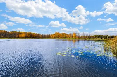 Aitkin Residential Lots & Land For Sale: Tbd Tract H & I Peony Avenue