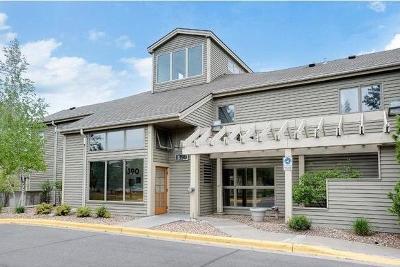 Saint Paul Condo/Townhouse For Sale: 1390 Carling Drive #213
