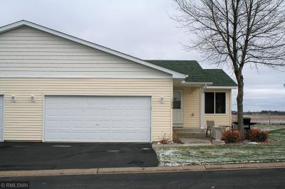 Buffalo Condo/Townhouse For Sale: 1004 Ivy Ridge Lane