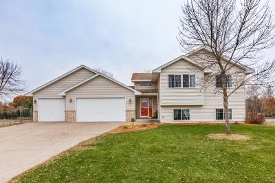 North Branch Single Family Home For Sale: 7272 377th Circle
