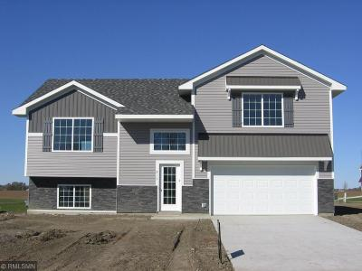 Howard Lake Single Family Home For Sale: 317 Terning Way