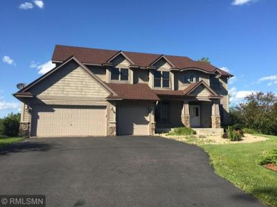 Lakeville MN Single Family Home For Sale: $499,500
