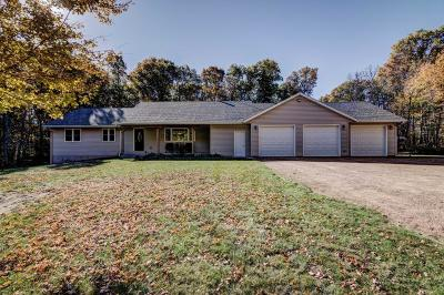 Single Family Home For Sale: 9429 Olson Drive