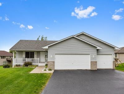 Buffalo Single Family Home For Sale: 1617 Helen Street