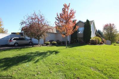Buffalo Single Family Home For Sale: 804 Fox Trail