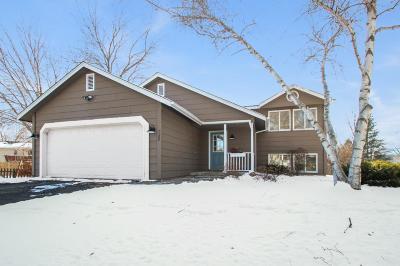 Saint Paul Park Single Family Home For Sale: 1132 Lincoln Court