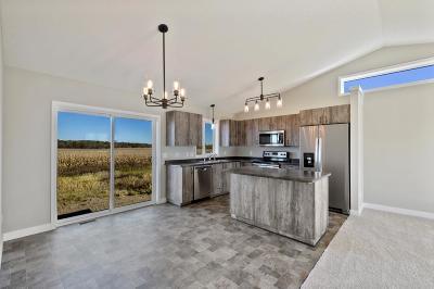 Anoka County, Carver County, Chisago County, Dakota County, Hennepin County, Ramsey County, Sherburne County, Washington County, Wright County Single Family Home For Sale: 70 Fitzgerald Avenue N