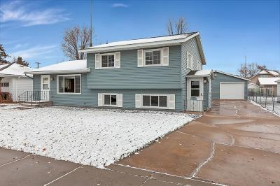 Sartell, Saint Cloud, Saint Joseph, Sauk Rapids, Rice, Clearwater, Monticello Single Family Home For Sale: 1110 11th Avenue N