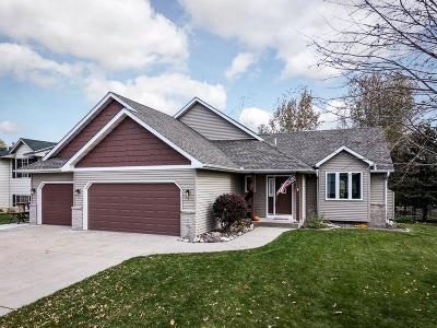 Montrose Single Family Home For Sale: 290 Fairmont Avenue S