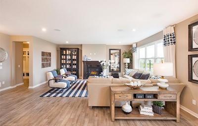 Single Family Home For Sale: 12926 Leyte Circle NE