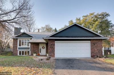 Wayzata, Plymouth Single Family Home For Sale: 12205 60th Place N