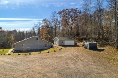 Single Family Home For Sale: 17341 County Highway M