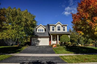 Rosemount Single Family Home For Sale: 13209 Bronze Parkway