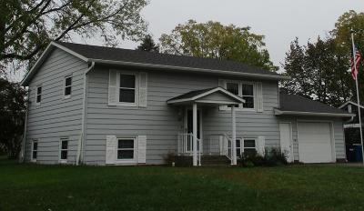 Saint Joseph Single Family Home For Sale: 115 5th Avenue NW