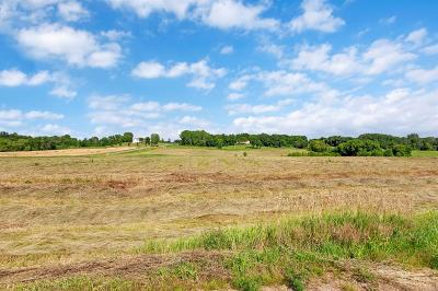 Residential Lots & Land For Sale: 19851 190th Street