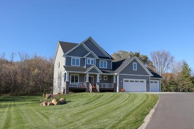 Lakeville Single Family Home For Sale: 9682 Woodhill Boulevard