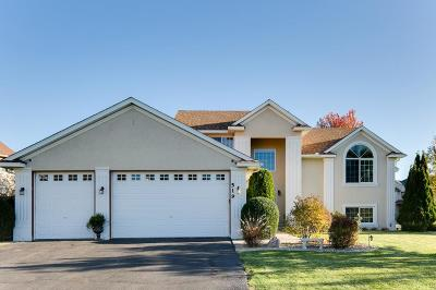 Saint Michael Single Family Home For Sale: 519 Lincoln Drive NE