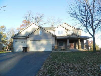 Elk River Single Family Home For Sale: 19442 Zane Street NW