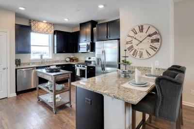 Maple Grove Condo/Townhouse For Sale: 9667 Olive Lane N
