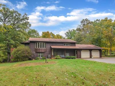 Saint Michael Single Family Home For Sale: 2558 Lambert Avenue NE